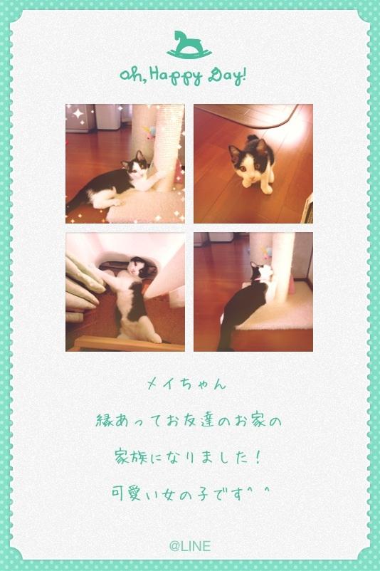 image_20130720075606.jpg