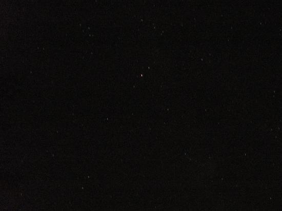 ニャン太12+323_convert_20130817135335