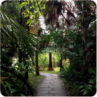台北植物園森