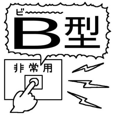 b101.jpg