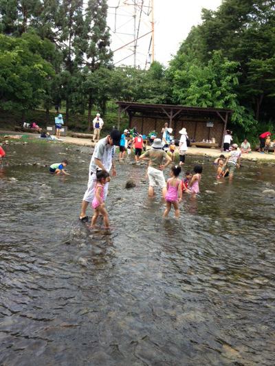 河川環境楽園2