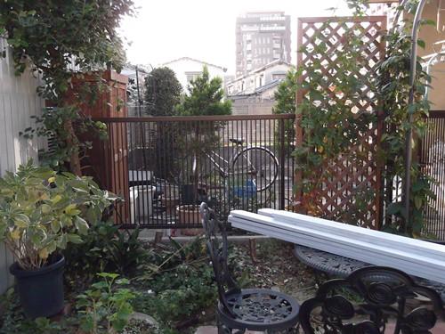 20131206西花壇