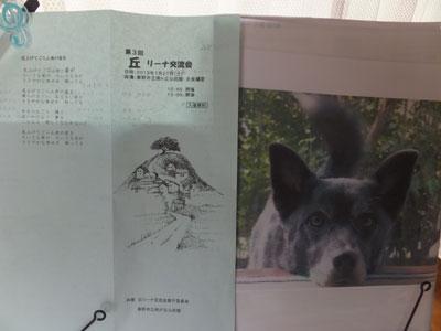 okari-nakouryukai9.jpg