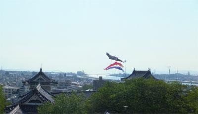 tokushima4.jpg