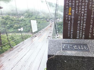 turibashi4.jpg