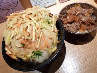20131007TAKUMI_kakiageudon_sujidon.jpg