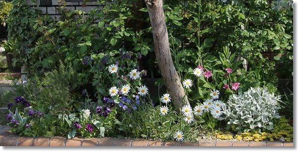 花壇全景 4