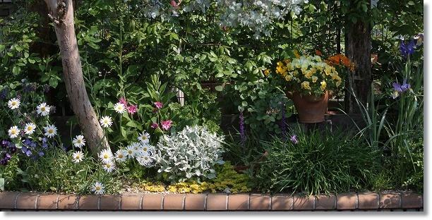 花壇全景 6