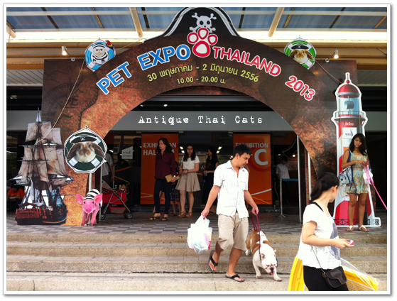 PET EXPO THAILAND 2013