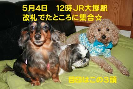 1_20130503184224.jpg