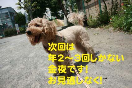 2_20130516162003.jpg