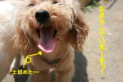 2_20130530135149.jpg