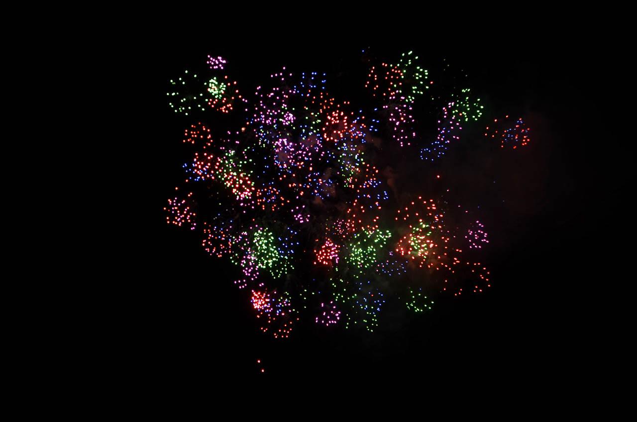 D70_5453墨田の花火