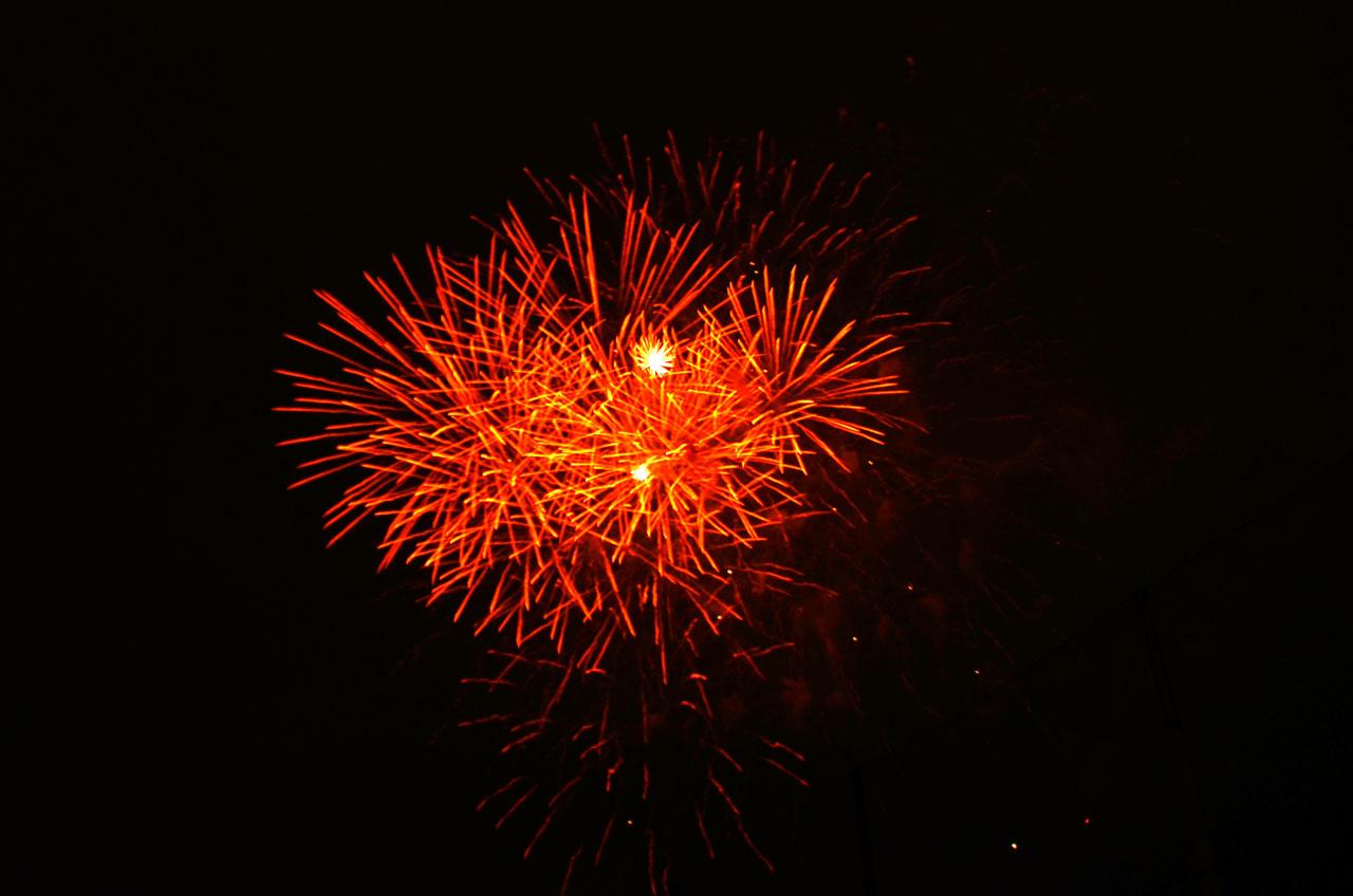D70_5462墨田の花火