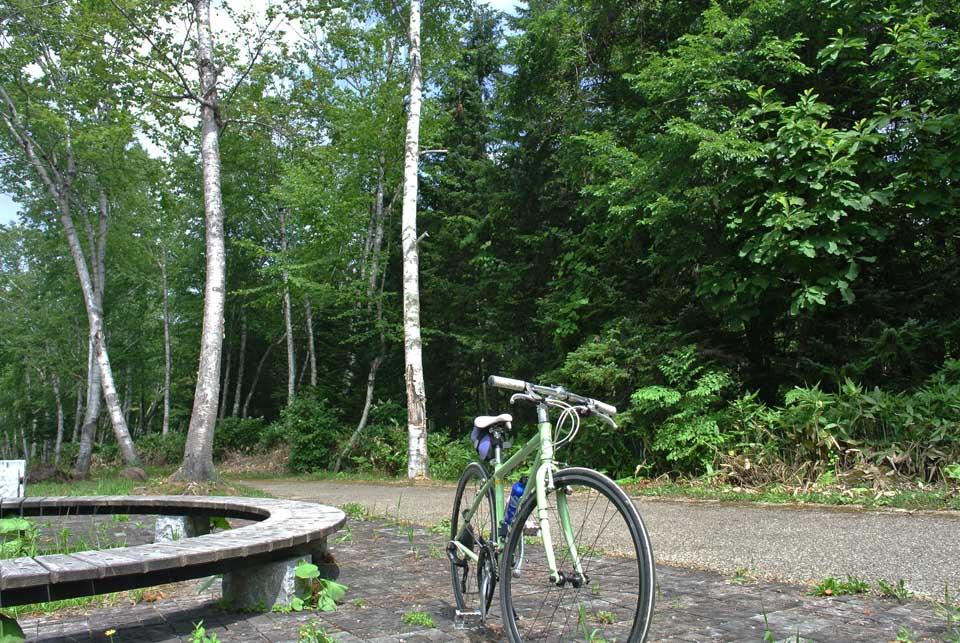 DSC_6242白金サイクリング
