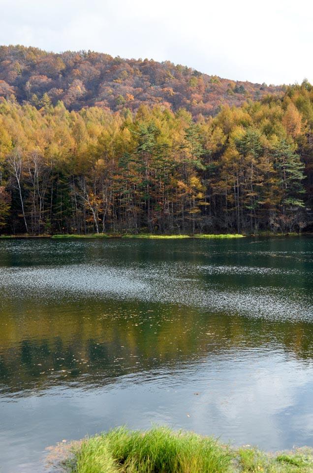 D70_5840池湖