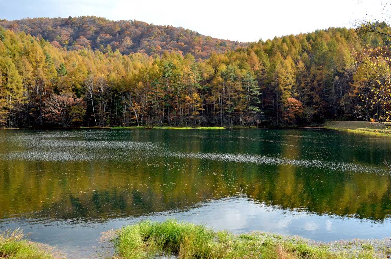 D70_5842池湖
