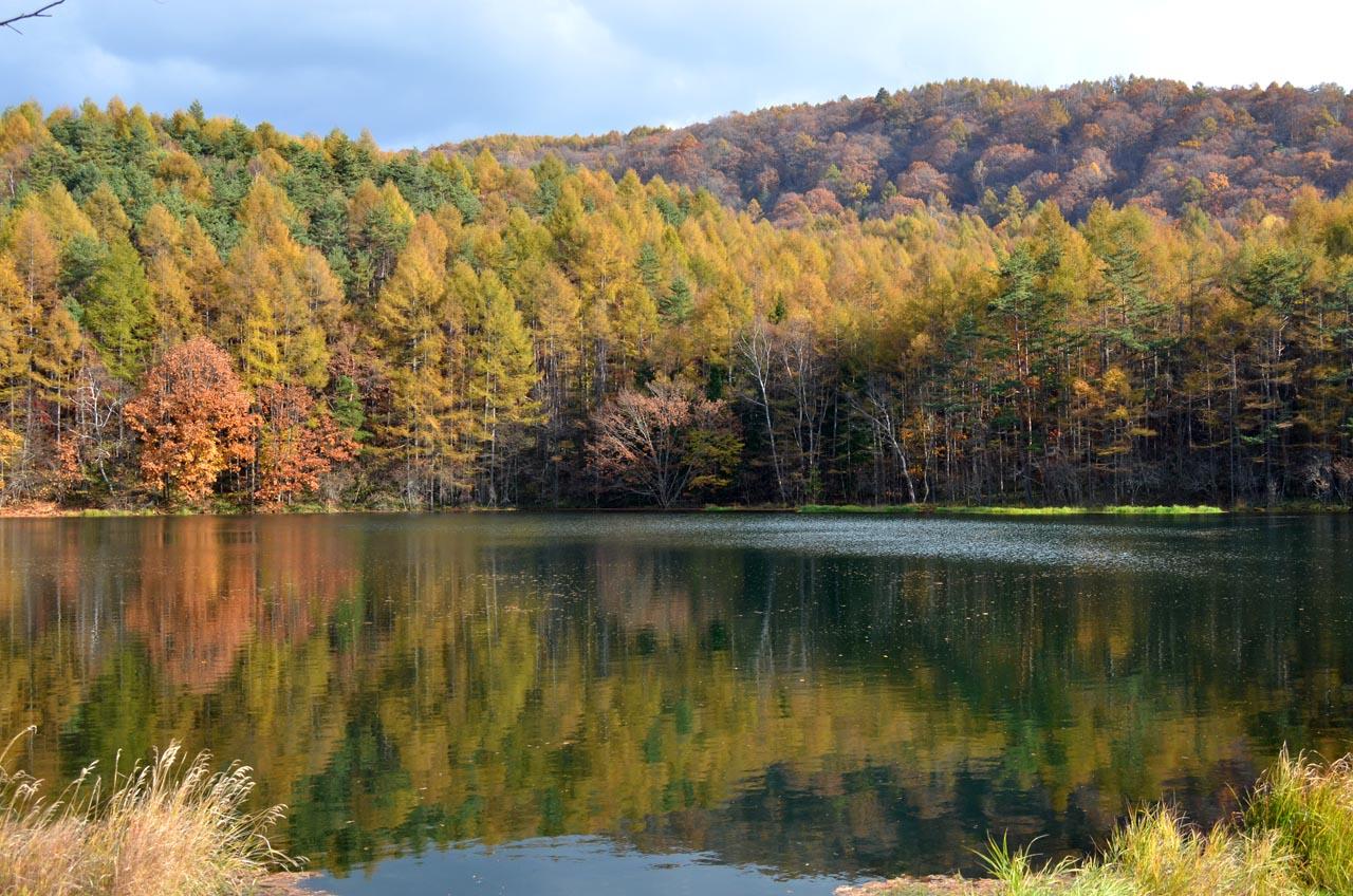 D70_5852池湖
