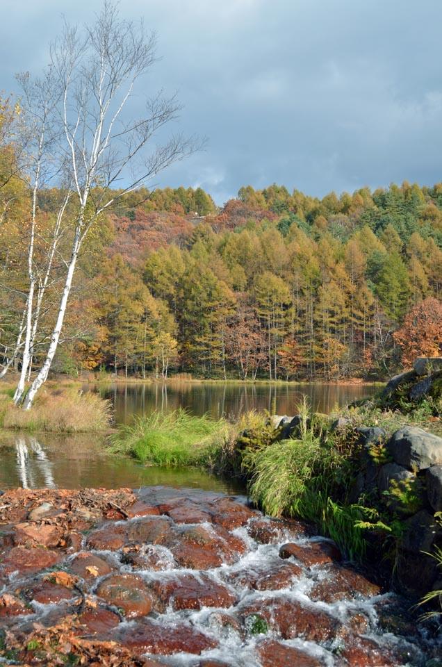 D70_5860池湖