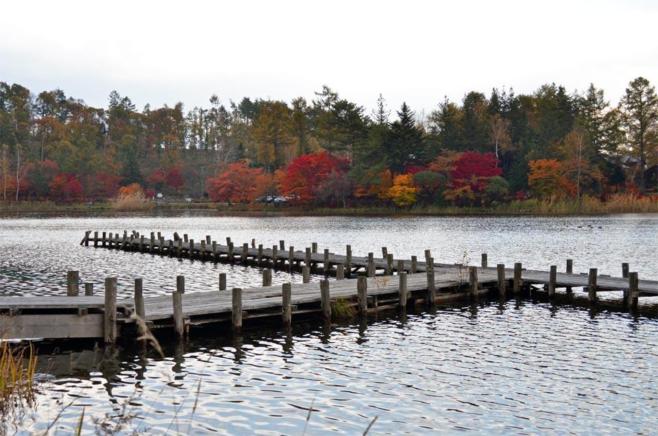 D70_5874池湖