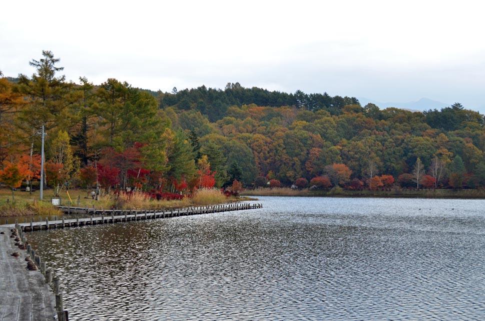 D70_5882池湖