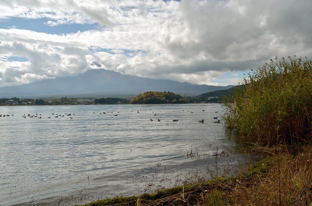 D70_4879河口湖