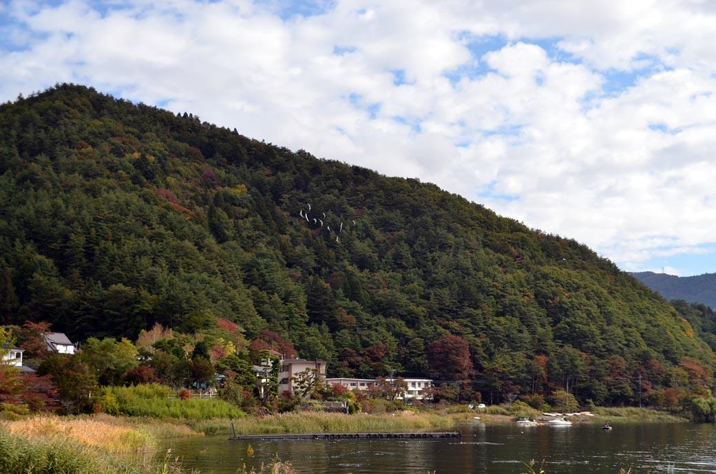 D70_4922河口湖