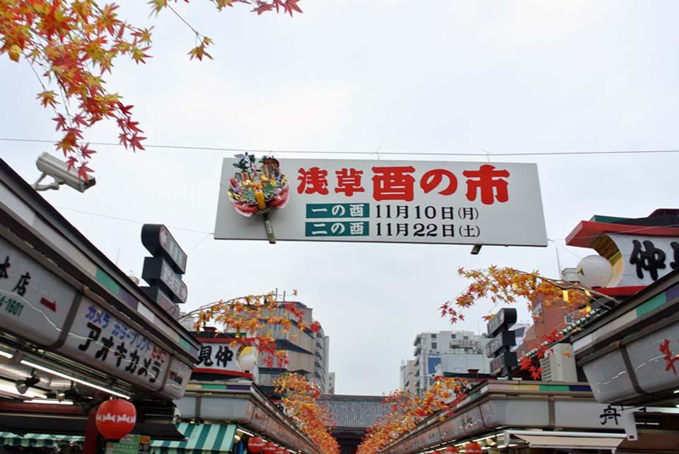 DSC_5407生け花