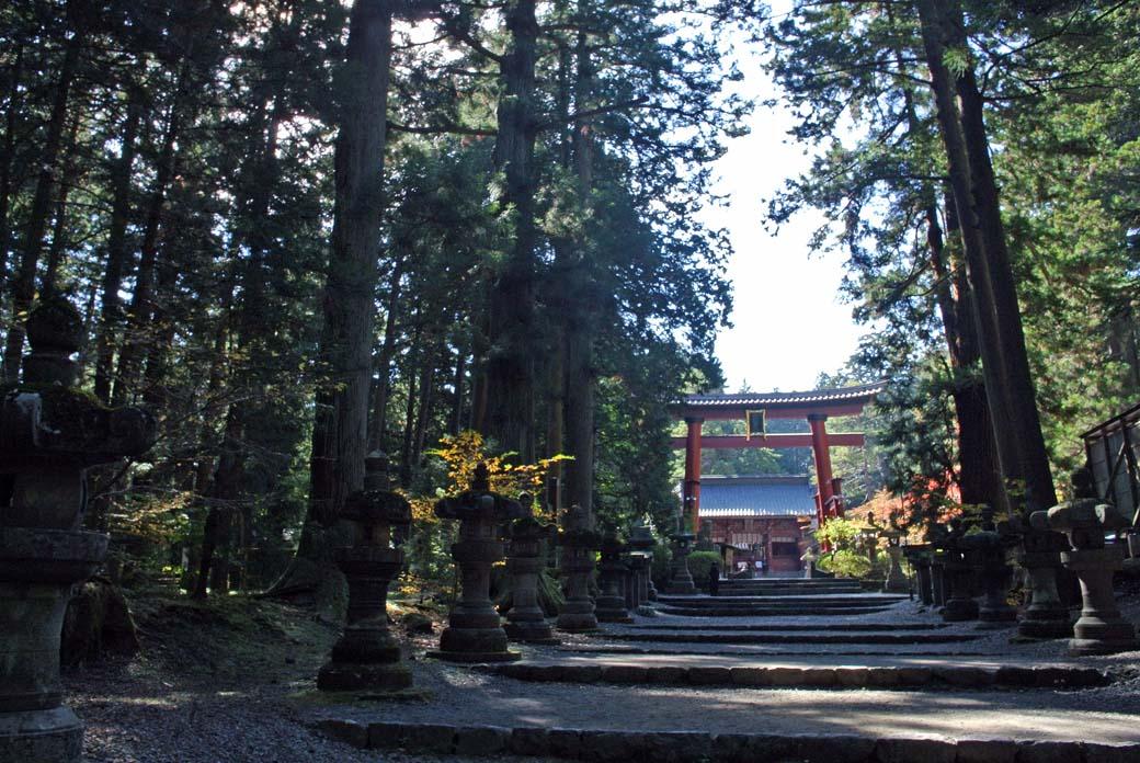 DSC_5264浅間神社
