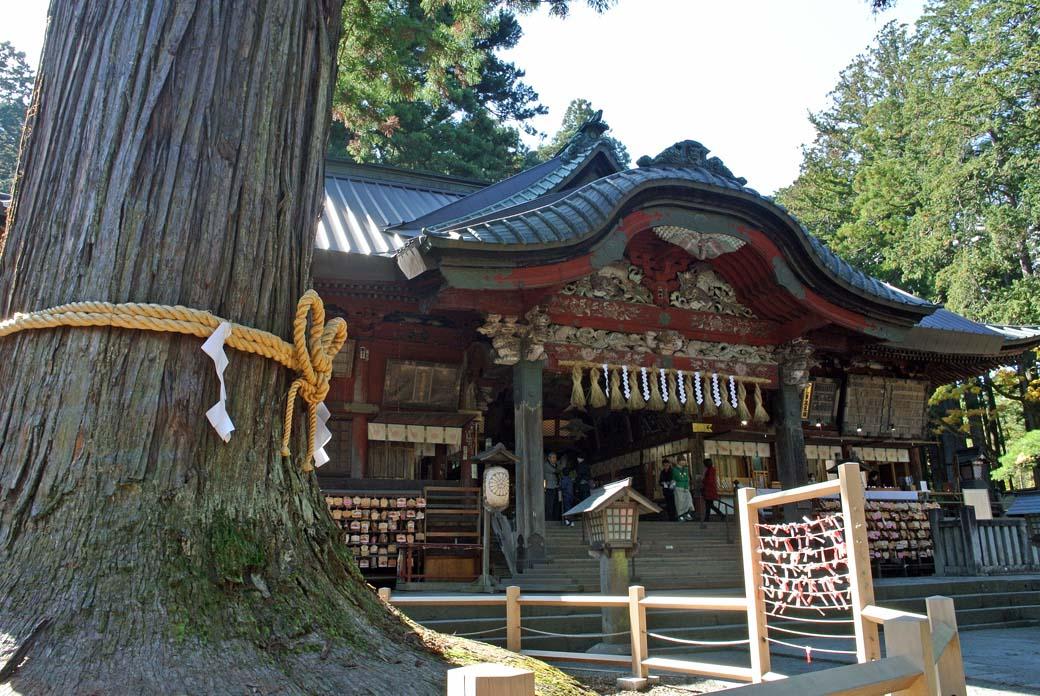 DSC_5282浅間神社