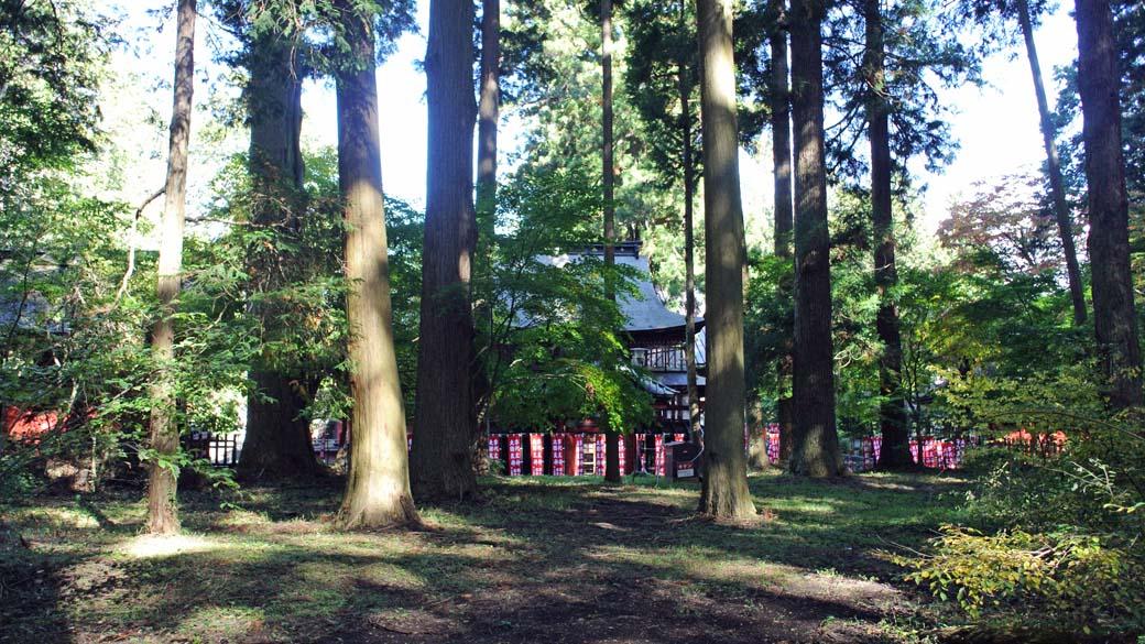 DSC_5299浅間神社