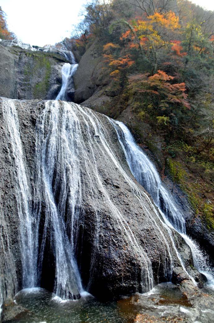D70_8532滝