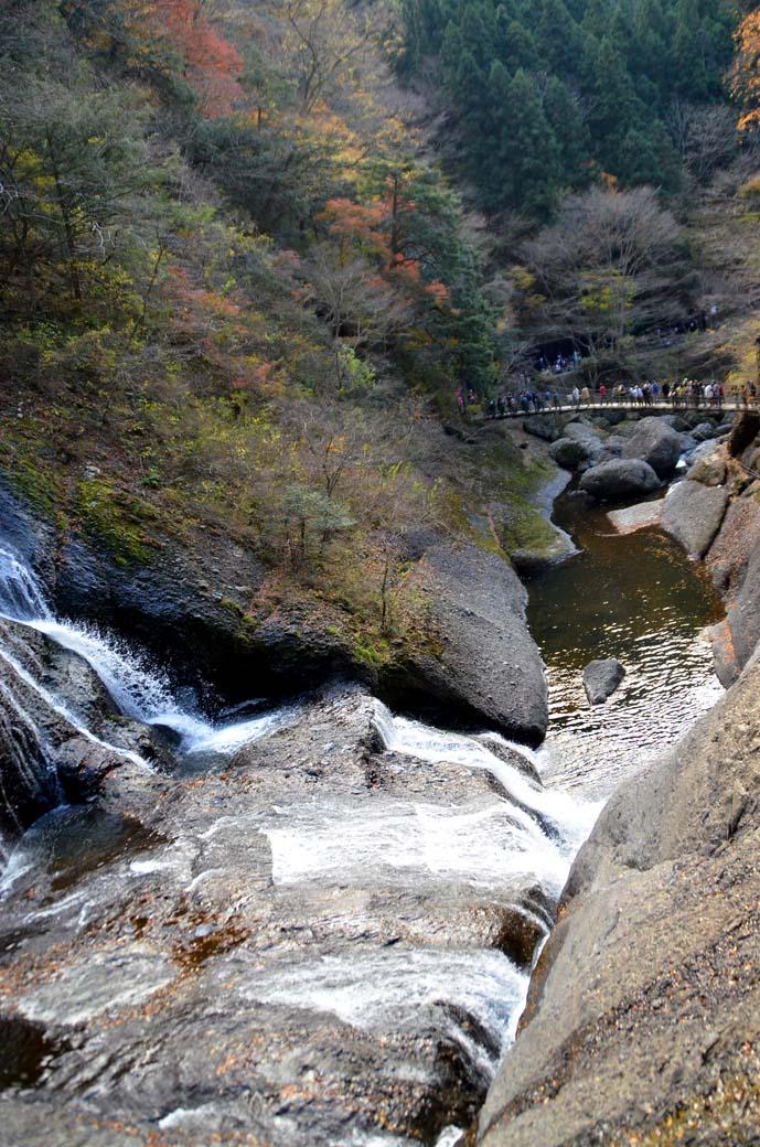 D70_8565滝