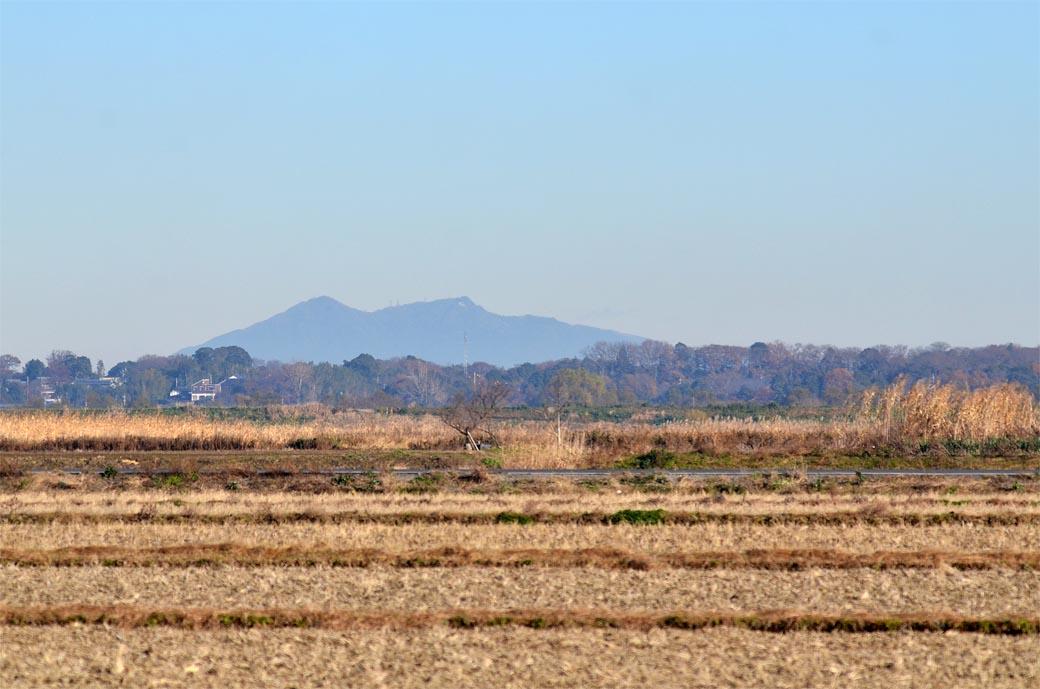北新田からの筑波山