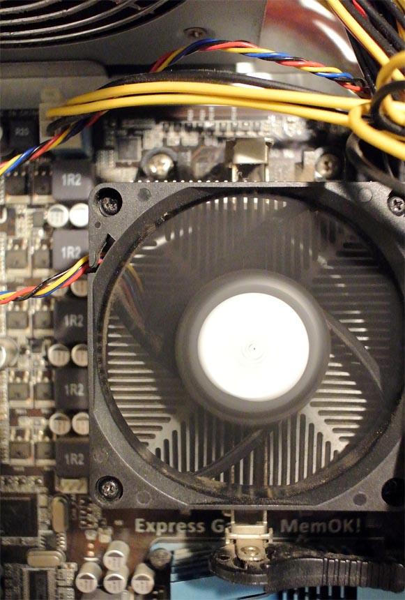 DSC_7403PC.jpg