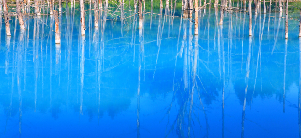 visual_bluepond.jpg