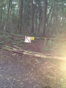 樹海立ち入り禁止看板