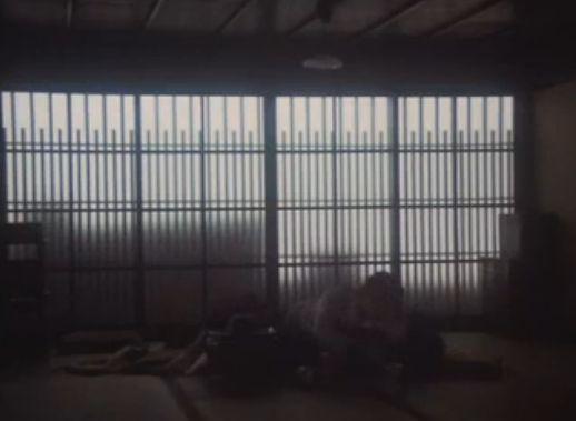 【岸惠子】抱き合って濃厚なキスをするラブシーン