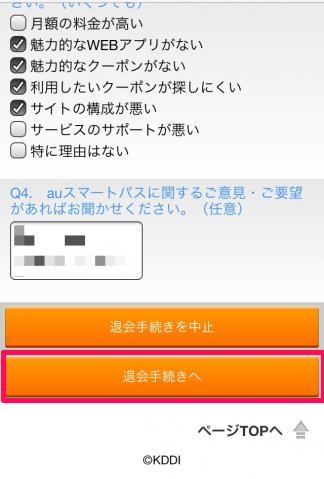 au_smart_011.jpg