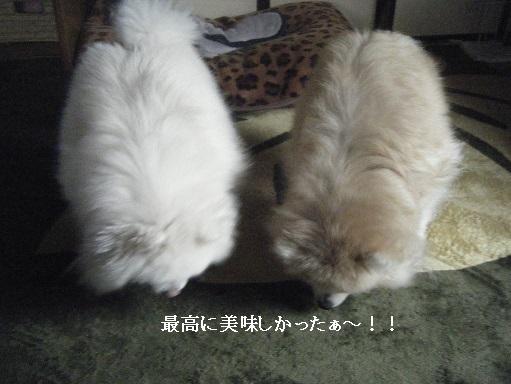 DSCF7046.jpg
