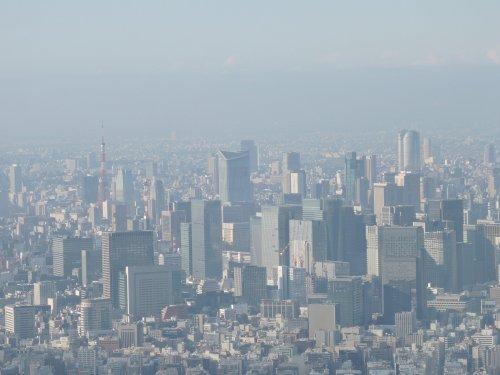 4回廊東京タワー、六本木