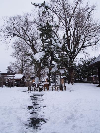 15雪11