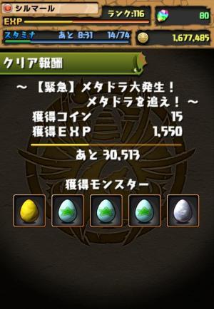 037_convert_20130516211325.jpg