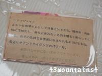アマゾナイト ピアス(YO) (4) (200x150)
