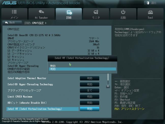 intel VT(intel Virtualization Technology)