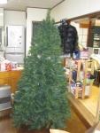 20141123クリスマスツリー (3)-1