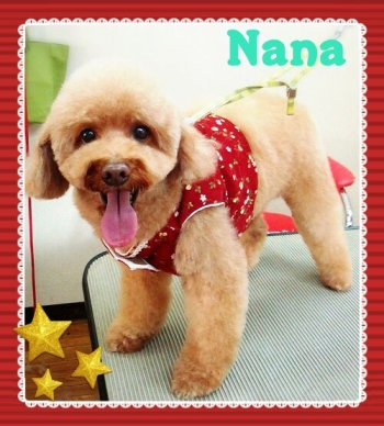 nana1.jpg