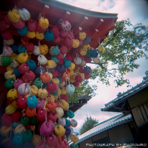 20131019-009.jpg