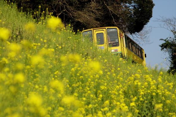 2009年4月上旬 いすみ鉄道 国吉~上総中川