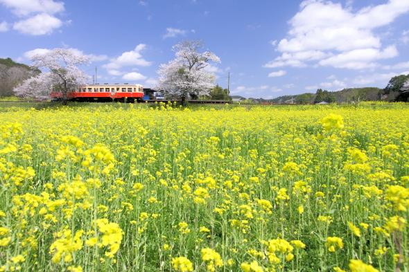 2010年4月上旬 小湊鉄道 飯給